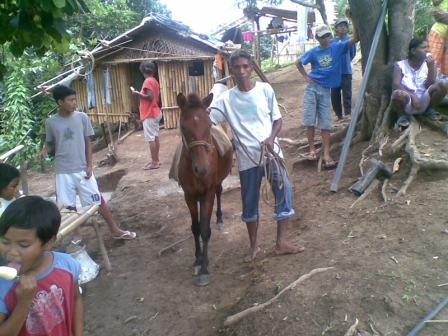 Pack Horses for The Dumagat People